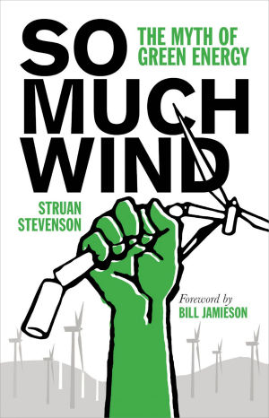 SO MUCH WIND - The Myth of Green Energy